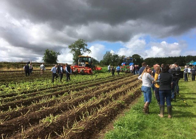 A demonstration of triple bed haulm flailers at Potatoes in Practice in 2019 prior to the introduction of social distancing guidance
