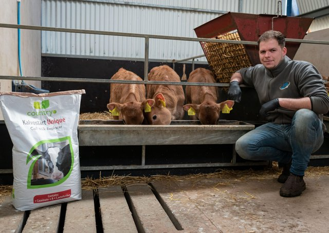 Sam Johnston, Jersey cow farmer from Fintona