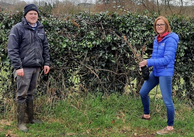 James Speers and Wendy George (CAFRE) discuss plant selection for hedge planting