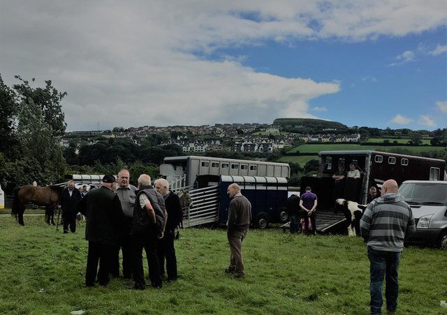The annual June Horse Fair has been held in Derry's Brandywell for well over a century, but due to Covid-19 it will now be cancelled for just the second time in its history