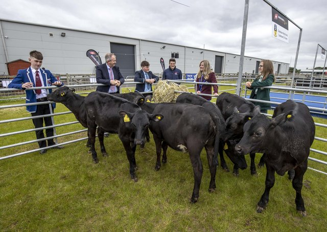 Representing the teams are from left Stuart Cromie, ABP Molly Nelson, Friends' School Lisburn, William Hamilton, Cookstown High School, Lois McCurdy Dalriada School, Ballymoney, Mark Grew St Kevin's College Lisnaskea and Charles Smith of the Northern Irish Angus