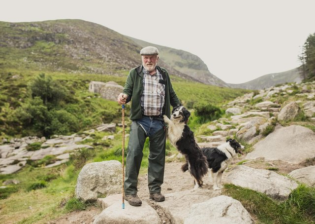 National Trust conacre farmer John Maginn pictured with his sheepdogs on Slieve Donard. National Trust images/Paul Moane