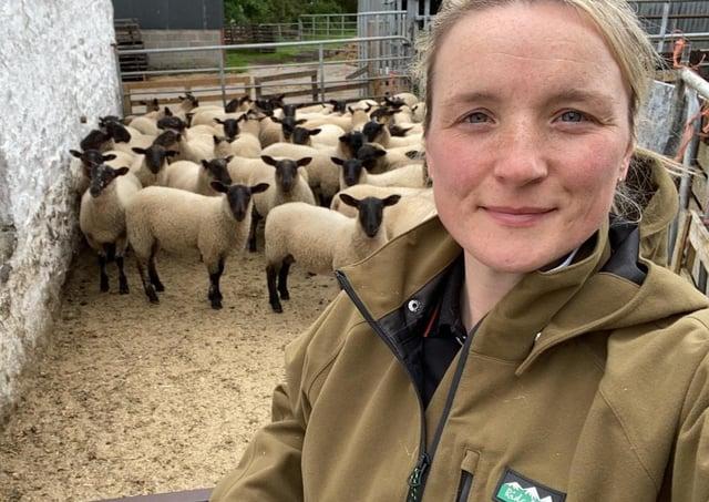 Jayne and sheep