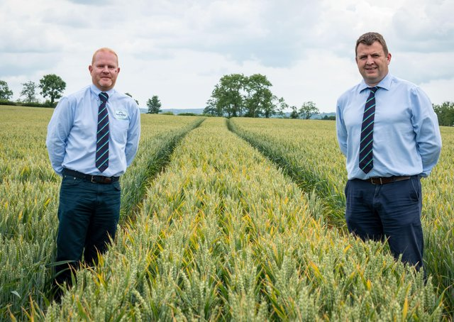Pictured: (left to right) Stephen Bell, Technical Support Manager and Jonathan Dunn, Agronomy & Forage Services Manager