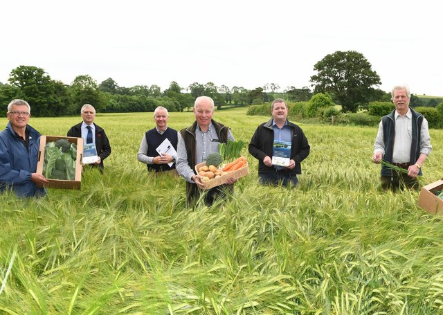Pictured: (left to right, front row) Farmer Charlie Kilpatrick, UFU vegetable vice chair Roy Lyttle and facilitator Ian Duff. (L-R, back row) UFU deputy president William Irvine, UAS chair Bruce Steele, UFU seeds and cereals committee members David McElrea and Robert Moore.