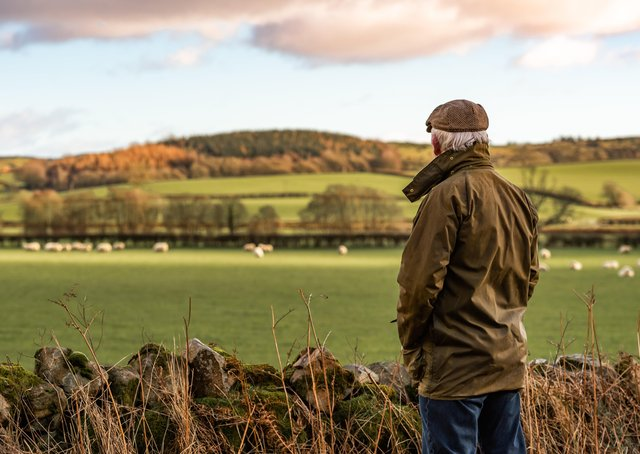 A man with his back to camera wearing a waxed jacket and flat tweed cap looking across a field