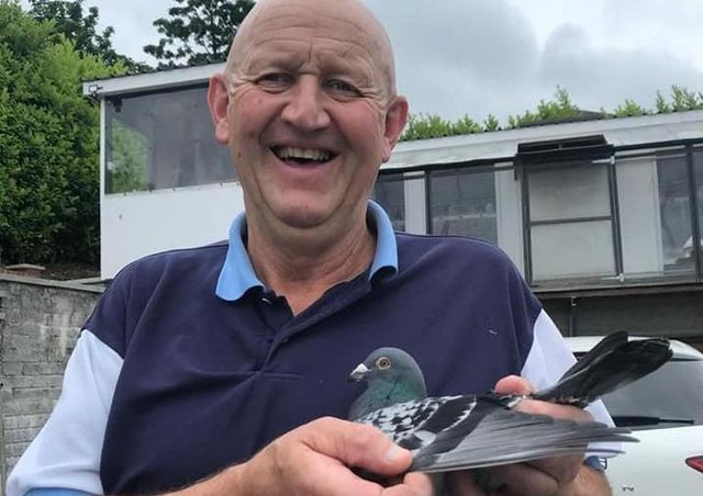 Ron Williamson from Newry & District holding his latest 1st Open NIPA winner, it's the third time he has won the Premier OB National with the Mighty NIPA.
