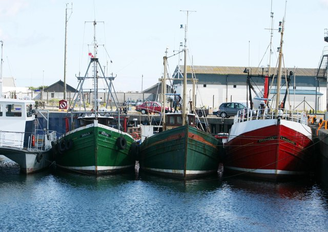 Fishing trawlers in Portavogie Harbour. Picture: Brian Little/News Letter archives